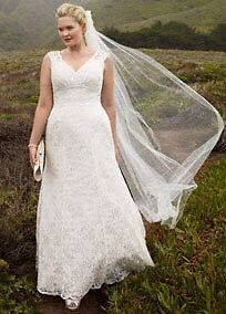 Size 24W Champagne/Ivory lace wedding gown