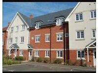 Lovely large 2 double bedroom ground floor apartment Terriers