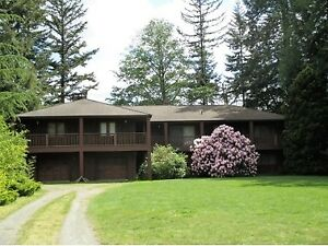 5300 SF home in Country Setting in South Langley!