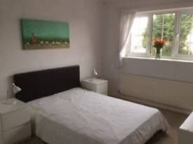 Double room in shared house, garden, lounge, bath/shower, Professionals only.