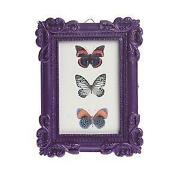 Purple Photo Frame