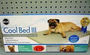 """""""COOL BED"""" III Cooling Dog's Bed - SM - BRAND NEW"""