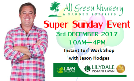 December Super Sunday with Jason Hodges