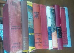Old Fiction Books, early 1900's