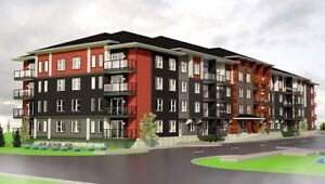 Luxury Suites Coming Soon! Get on Waitlist Today! Pet Friendly!