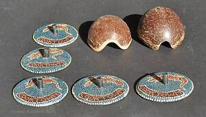 Two Small Shells 5 Cooktown Lids Cooktown Cook Area Preview