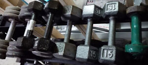 Set of Assorted Dumbbells from 7lbs to 35lbs (Not full set)