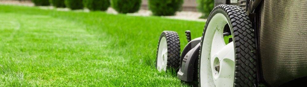 grassseedstore