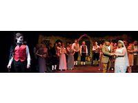 Director - Amateur Opera Company