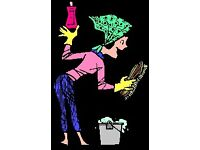 Reliable cleaner in Acton, Chiswick, Ealing to help with unpleasant chores