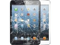 Apple iPad mini Cracked Glass Digitiser/LCD Screen Replacement