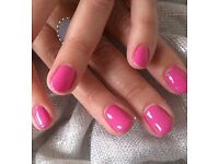 SHELLAC for just £10!!!!!
