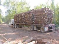 Looking for Custom Log Trucking