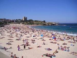 Wanted UNSW students (female) for Randwick/Coogee Beach flat Randwick Eastern Suburbs Preview