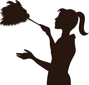 HOME-MAID CLEANING SERVICE