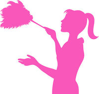 Trustworthy Cleaner •Affordable Pricing•
