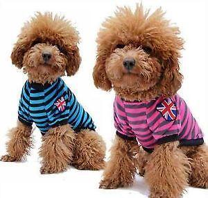 Dog Clothes Pet Amp Canine Fashions Ebay