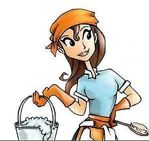 EUROPEAN CLEANING LADIES WITH FLAT RATES ALL 647-444-0553