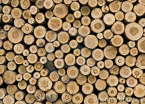 Firewood For Sale - Hardwood Mix Unsplit $70 Face Cord