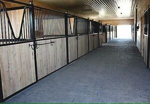 Horse boarding with large stalls and indoor arena near Guelph