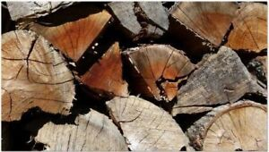 R U TIRED OF WET FIREWOOD & PAYING HIGH PRICES ? 449-0009