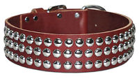 Leather Brothers brown leather studded dog collar
