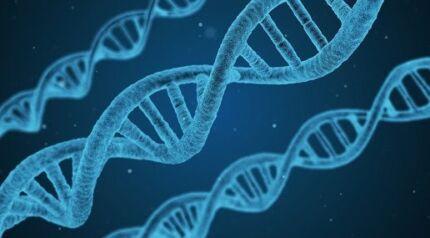 VCE Biology tutoring- Biology Made Easy