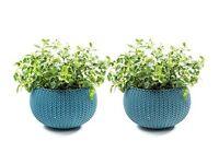 Keter Knit Cozies Indoor/Outdoor Garden Plant Pot Planters, Small - Ocean Blue d2
