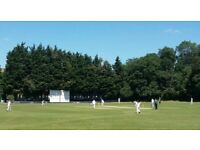 CHILLED EAST LONDON CRICKET CLUB LOOKING FOR PLAYERS OF ALL ABILITIES!