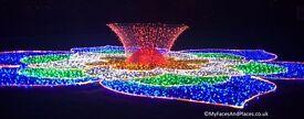 Festival of lights longeat