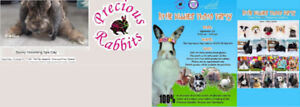 Precious Rabbits Rescue and Sanctuary Society