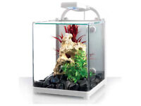 Love Fish Nano 13 Litre Cube Tank