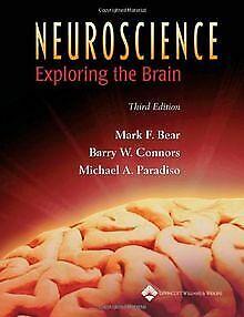 Neuroscience: Exploring the Brain (**) von Mark F. Bear | Buch | Zustand gut