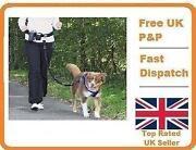 Waist Dog Lead
