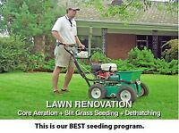 Thatch Removal Fertilizing Seed Aeration Lawn Mowing landscaping