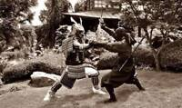 Ninjutsu and Traditional Japanese Martial Arts