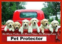 PET PROTECTOR MEDALLION FROM FLEAS AND TICKS
