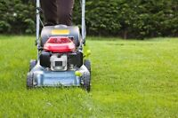 Lawn cutting and trimming services