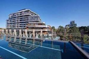 WANTED: Apartment in Abbotsford or surrounding area Abbotsford Yarra Area Preview