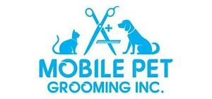 Mobile Pet Grooming GTA - Receive $20 Off Our Grooming Services