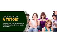 ENGLISH TUTOR : CONVERSATIONAL PURPOSES, EDUCATIONAL or ELOCUTION AND PRONUNCIATION - SKYPE or 1:1