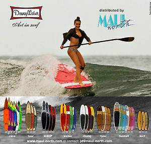 Standup Paddleboards - SUP - New Years Board Bash!