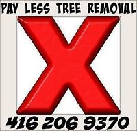 PAY LESS TREE REMOVAL, MAPLE, PINE, LOCUS, ELM, ASH.