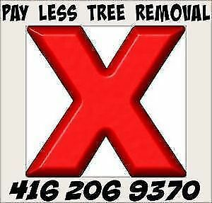 PAY LESS TREE REMOVAL, MAPLE, PINE, LOCUS, ELM, ASH. Oakville / Halton Region Toronto (GTA) image 1