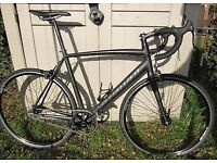 Specialized langster carbon forks single speed road bikes men's extra large frame single speed fixie