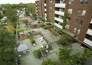 2 Bedroom Apartment for Rent in  Downtown St. Catharines!!