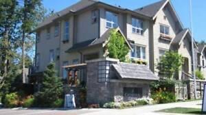 4 bd, 4 bath executive townhouse-Mountain Views