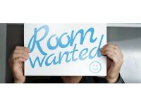 Room Wanted