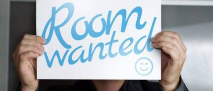 WANTED granny flat for rent for quiet student