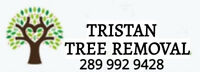 Tree removal_stump removal  services_branch chipper services.